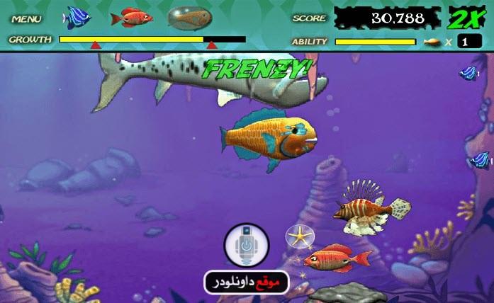 -لعبة-السمكة-2 تحميل لعبة السمكة القديمة للكمبيوتر بحجم صغير تحميل العاب كمبيوتر