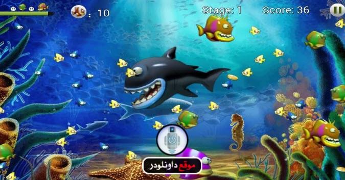 -لعبة-السمكة-3-4 تحميل لعبة السمكة 3 من ميديا فاير تحميل العاب كمبيوتر